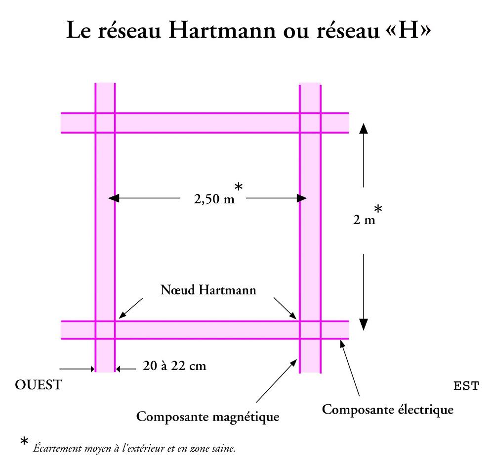 photo-9-le-reseau-Hartmann.jpg